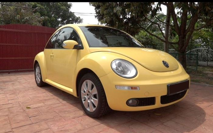 Picture for category Beetle